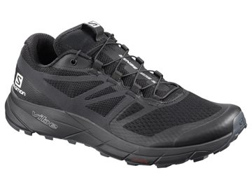 Produkt Salomon Sense Ride 2 W 408039