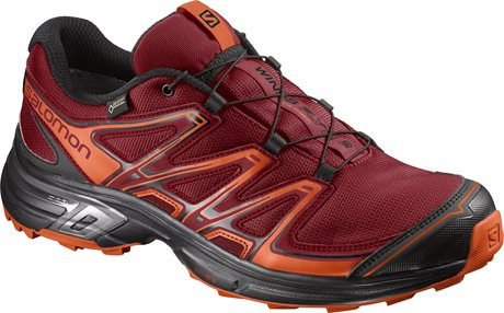 Salomon Wings Flyte 2 GTX 394713