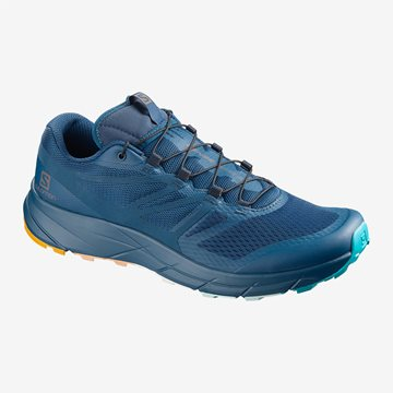 Produkt Salomon Sense Ride 2 MMB Limited 408987