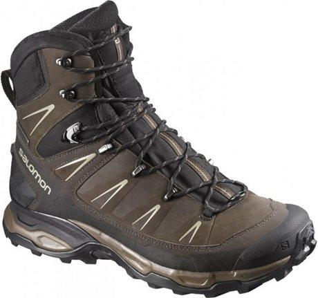 Salomon X Ultra Trek GTX 378386